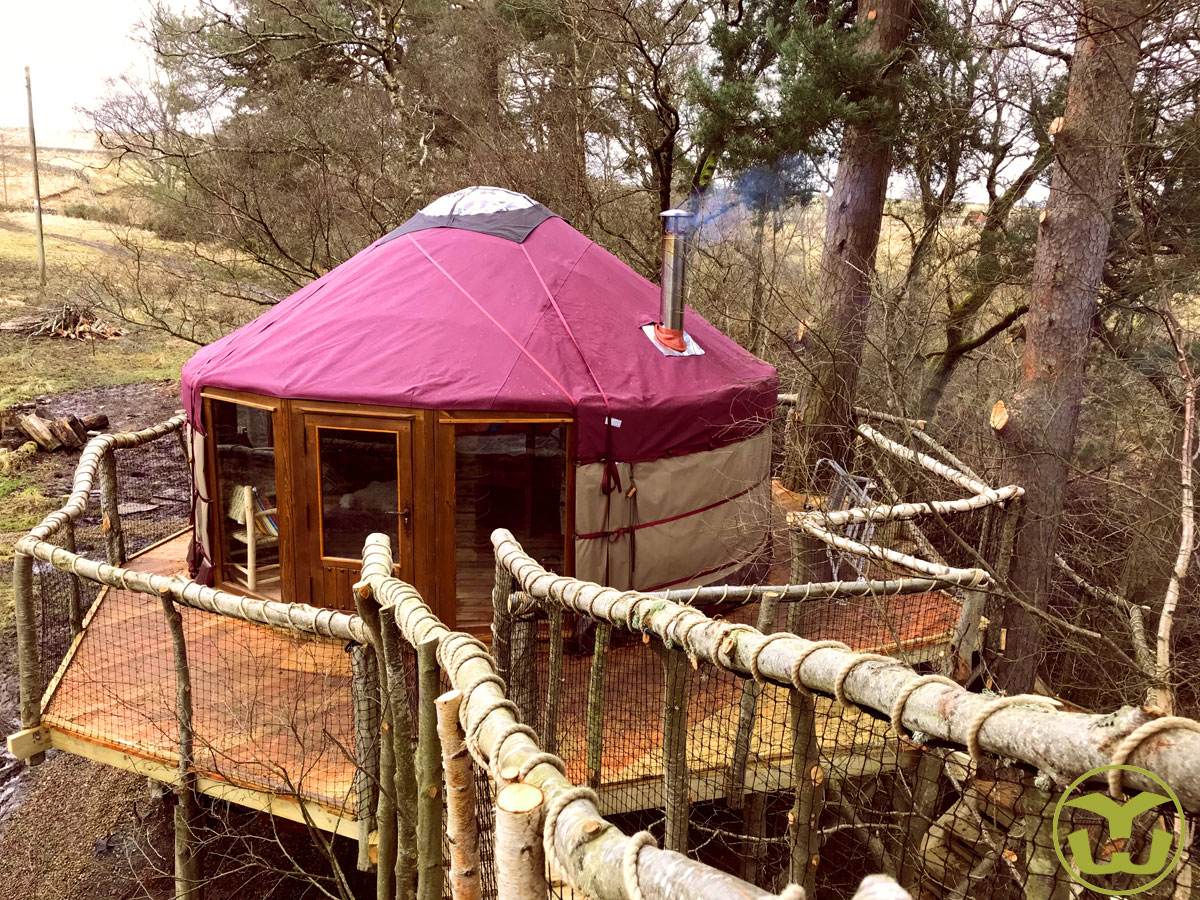 Yurt set in UK forest